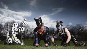Human Pups